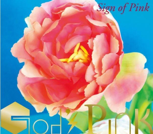 画像に alt 属性が指定されていません。ファイル名: godspink-pinkunokehai-cover.jpg